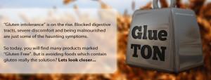 Gluten Intolerant, Gluten Sensitive & Celiac- Explained by Ron Hoggan, Ed. D.