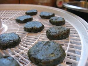 Gluten-Free,Grain-Free, Dairy-Free Round Chocolate Spirulina Balls: Recipe